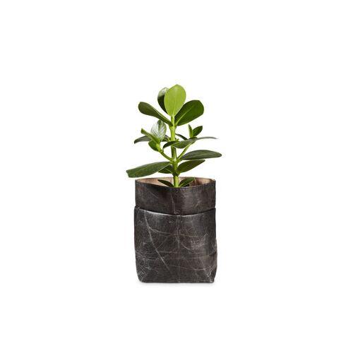 "BELEAF Pod Leaf"" Aus Blattleder Vegan bark black"