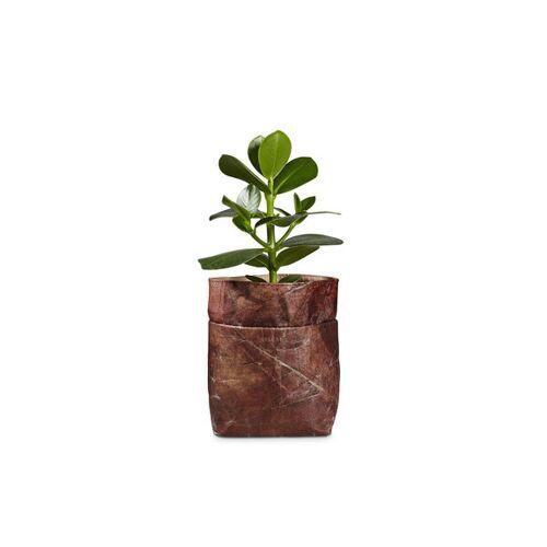 """BELEAF Pod Leaf"""" Aus Blattleder Vegan soil brown"""