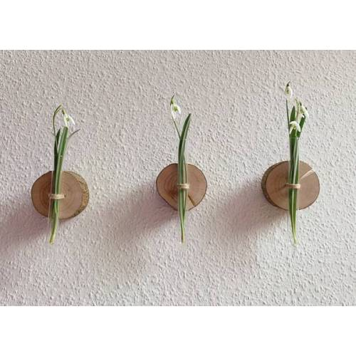 b.y.r.d. Kleine Baumscheibe Mit Reagenzglas-vase  3