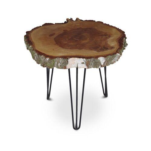 GreenHaus Couchtisch Baumscheibe Birke Massiv Beistelltisch Tisch Xxl