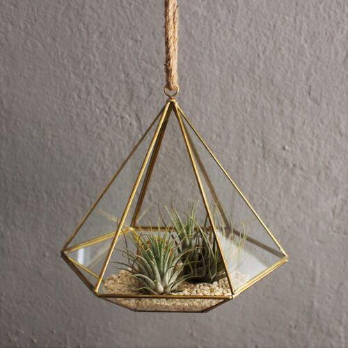 Mitienda Shop Geometrisches Terrarium Aus Glas - Diamant - Für Sukkulenten