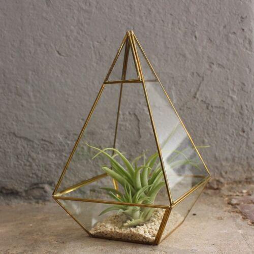Mitienda Shop Geometrisches Terrarium Aus Glas - Pyramide - Für Sukkulenten