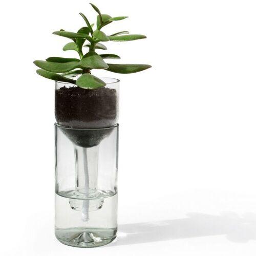 Side by Side Self Watering Bottle / Blumenbewässerungssystem klar