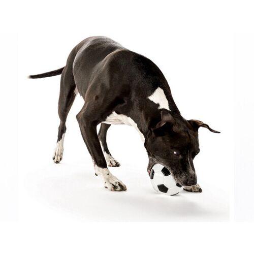 Planet Dog Robuster Öko-soccerball Für Hunde