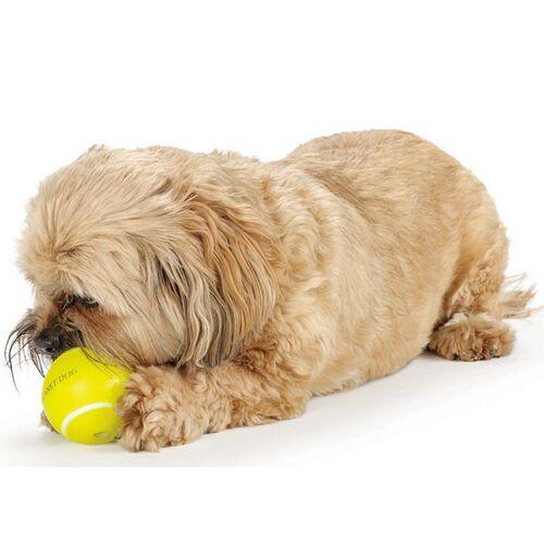 Planet Dog Tennisball Aus Orbee Tuff Für Hunde