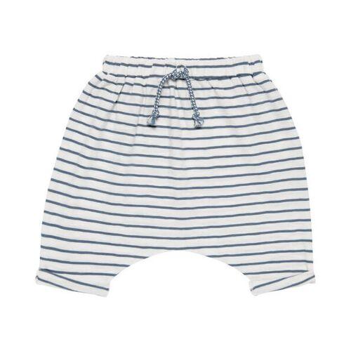 sense-organics Baby Pants * Magesh Blue Stripes * Gots   Sense Organics blue 3-6m 62/68