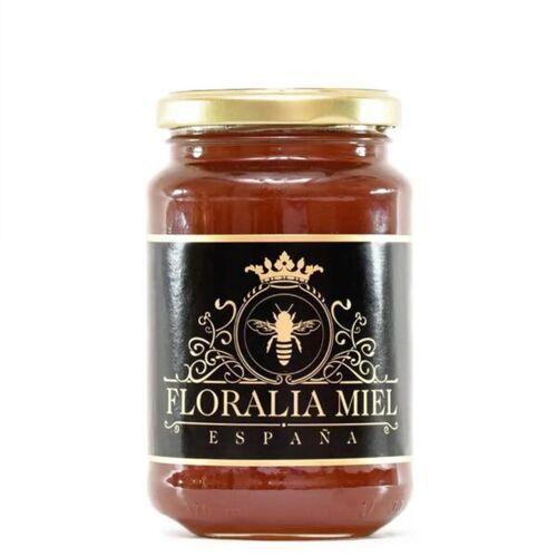 Mitienda Shop Eukalyptus Honig 500 Gr. Aus Spanien