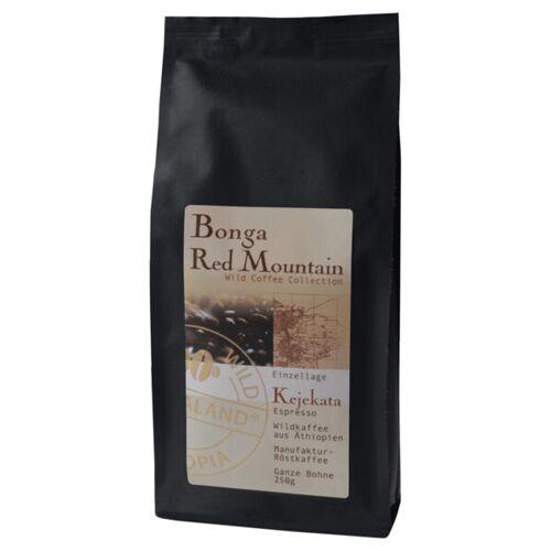 Bonga Red Mountin Bio Kaffee- Bio Wildkaffee kaffee