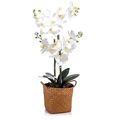 ABELLA Flora künstliche Orchidee Designtopf Höhe ca. 60cm