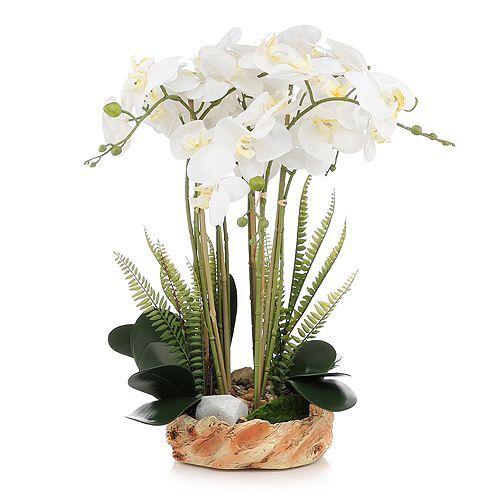 ABELLA Flora künstliche Orchidee Designtopf Höhe ca, 60cm