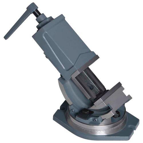 vidaXL 2-Achsen-Schraubstock Kippbar 100 mm