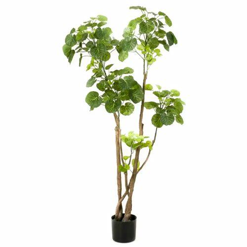 Emerald Kunstpflanze Fiederaralien Grün 135 cm 420292