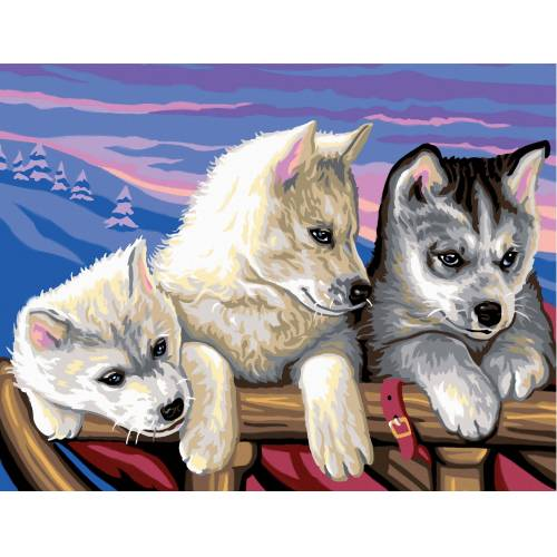 VBS Malen nach Zahlen »Malen nach Zahlen Huskies«, 38,2 x 29,2 cm