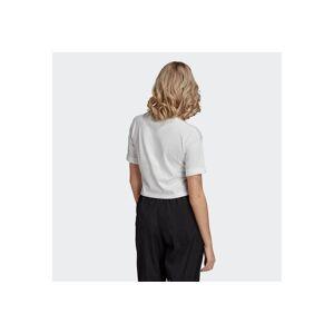 Adidas Originals T-Shirt »ADICOLOR 3D TREFOIL CROP-TOP«