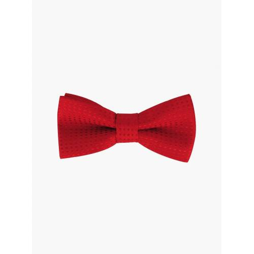 axy Fliege »Kinder Jungen Fliege gebunden 10 x 5 cm« bereits gebunden, verstellbar, mit Punkten, Rot