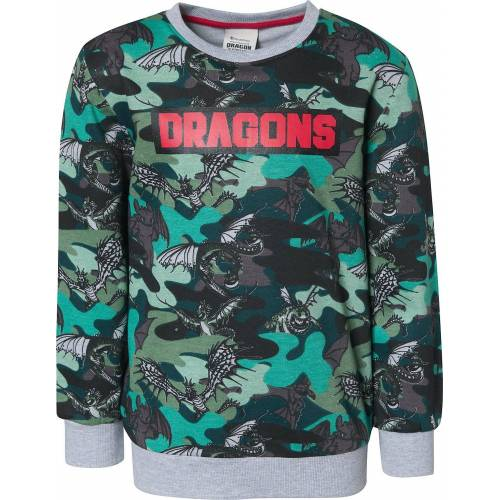 Dragons Sweatshirt »Sweatshirt für Jungen«