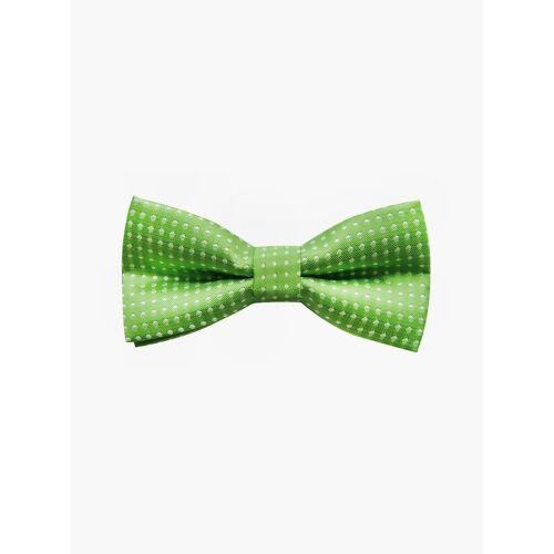 axy Fliege »Kinder Jungen Fliege gebunden 10 x 5 cm« bereits gebunden, verstellbar, mit Punkten, Grün