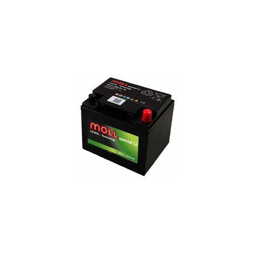 Moll Batterien MOLL 10 91 024 01 12 LiFePO4 12V Versorgungsbatterie 24Ah mit Bluetooth-App