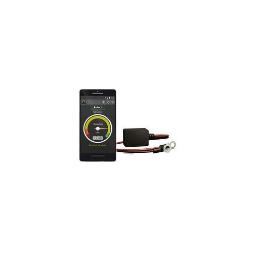 Intact Battery-Guard Batterieüberwachung mit Gratis-App 6V 12V 24V