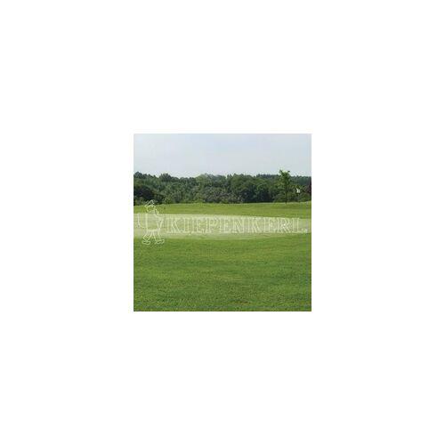 Rasen Kiepenkerl Kiepenkerl RSM 4.2.1 Golfrasen Vorgrün 10 kg