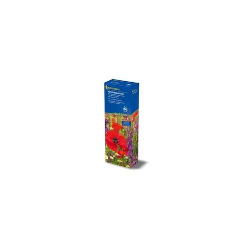 Rasen Kiepenkerl Kiepenkerl Profi-Line Blumenmischung Nuetzlingsparadies 40g