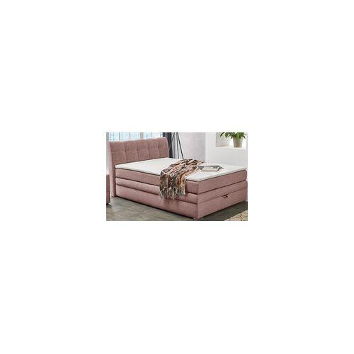 Jockenhöfer Boxspringbett Amelie in rose