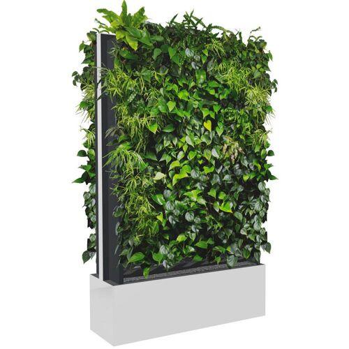 C+P Pflanzenwand auf Füßen, mit Trays für beidseitige Bepflanzung, b80xt40xh232cm