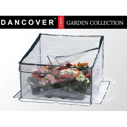 Dancover Mini-Gewächshaus, 0,7x0,7x0,35/0,50m, Durchsichtig
