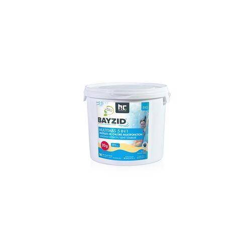 Höfer Chemie 4 x 5 kg BAYZID Multitabs 20g 5in1 für Pools(20 kg)
