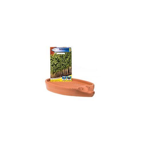 RÖMERTOPF Kresseigel zum Selberzüchten von Kresse / Kräutertier