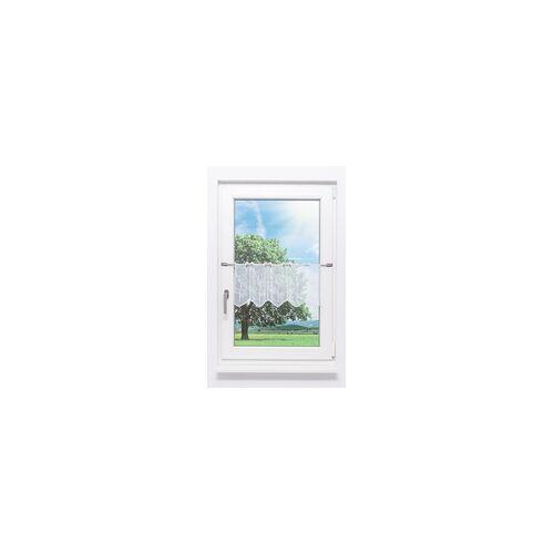 """PLAUENER SPITZE Scheibengardine Plauener Spitze - Baum """" (Bx H) 129,6cm * 29cm"""" weiß/Weiß"""