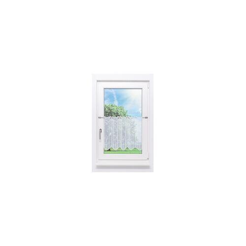 """PLAUENER SPITZE Scheibengardine Plauener Spitze - Baum """" (Bx H) 99cm * 50cm"""" Weiß/weiß"""
