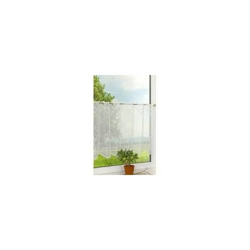 """PLAUENER SPITZE Scheibengardine Plauener Spitze - Baum """" (Bx H) 115.50cm * 50cm"""" Weiß/weiß"""