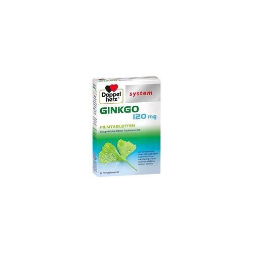 Queisser Doppelherz Ginkgo 120 mg system
