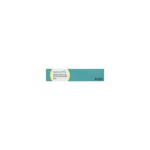 Boehringer Ingelheim CANIKUR Pro Paste vet. 30 ml
