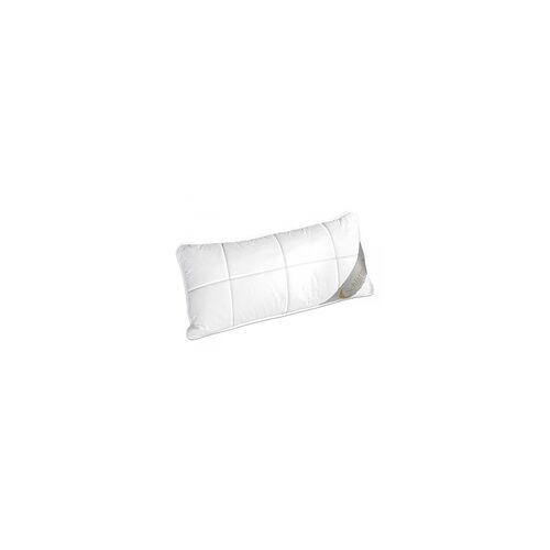 Schlafmond Kopfkissen LILLY(BL 40x80 cm) Schlafmond