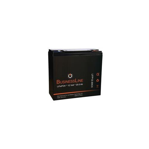 Spinfire Ersatzbatterie Lithium (LiFePO4 Akku) - 12V 20Ah mit BMS