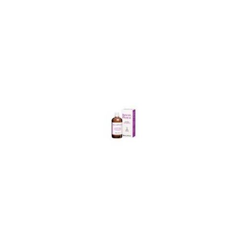 INFECTOPHARM Arzn.u.Consilium GmbH INFECTOPEDICUL Lösung 250 ml