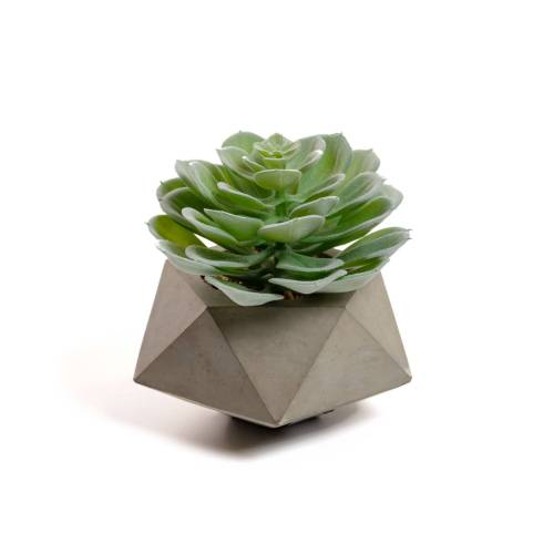 Kave Home - Echeveria Glauca kunstpflanze
