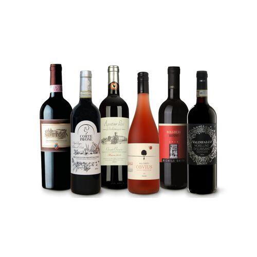 Vinusta Best of Toskana - die 6 besten Weine aus der Region Toskana