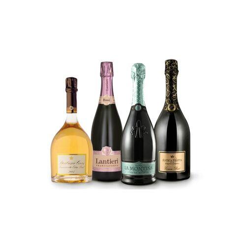 Vinusta Best of Franciacorta - 4 Franciacorta Weine von höchster ...