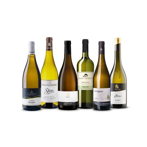 Vinusta Best of Sauvignon - 6 Flaschen des besten Sauvignon Weins