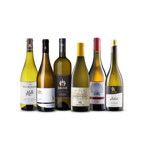 Vinusta Must have Chardonnay Box - 6 Chardonnay Weine von höchste...