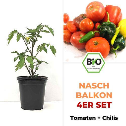 Pepperworld Nasch-Balkon 4er Set - BIO Pflanzen