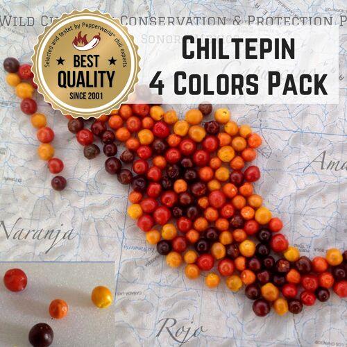 Pepperworld GO WILD 4 Colors - Chiltepin BIO Pflanzen-Power-Pack