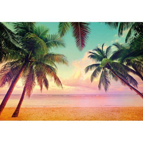Komar Miami Fototapete 368x254cm