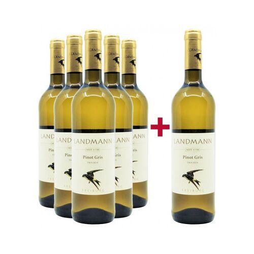 Weingut Landmann Landmann 2019 5+1 Paket Pinot Gris trocken Bio