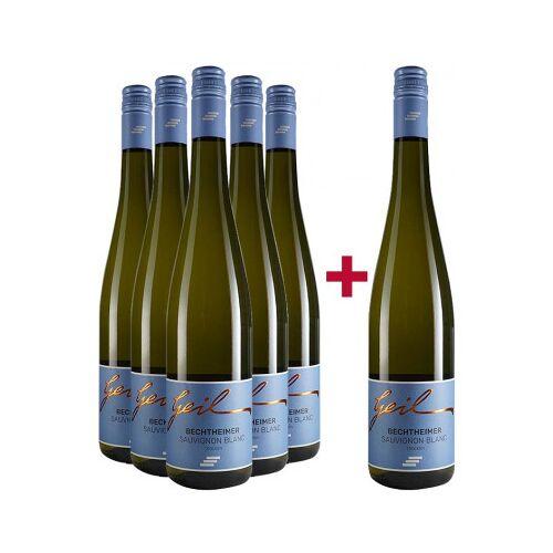 Weingut Helmut Geil Helmut Geil 2020 5+1 Sauvignon Blanc Paket