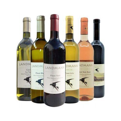 Weingut Landmann Landmann  Weingut Landmann Kennenlernpaket