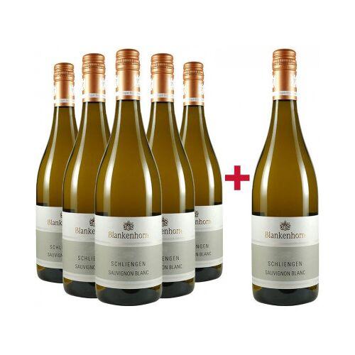 Weingut Blankenhorn Blankenhorn 2018 Sauvignon Blanc VDP.ORTSWEIN Paket